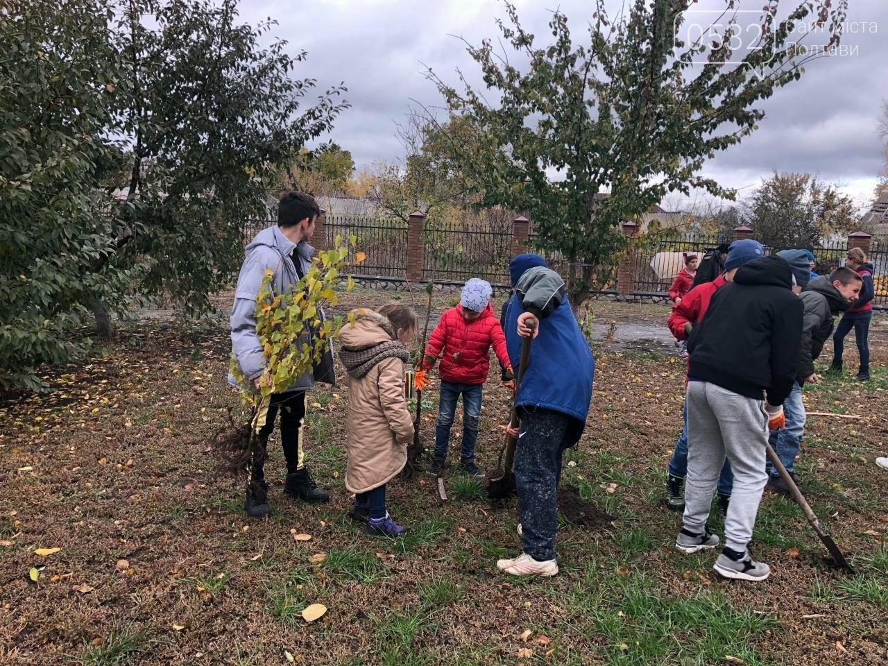 Полтавські діти долучилися до Всеукраїнської акції «Посади дерево миру», фото-1