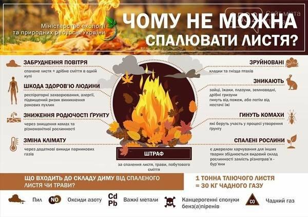 Олексій Чепурко розповів, чи зможуть полтавці від'єднуватися від централізованого теплопостачання та як у Полтаві утилізують листя, фото-3
