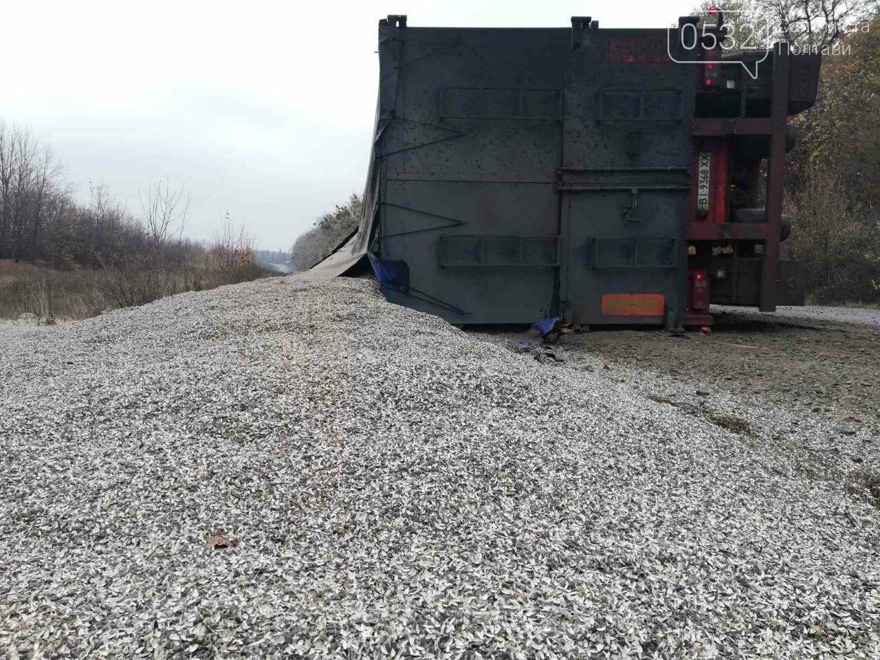 На Полтавщині перекинулася вантажівка із лушпинням насіння (ФОТО), фото-2