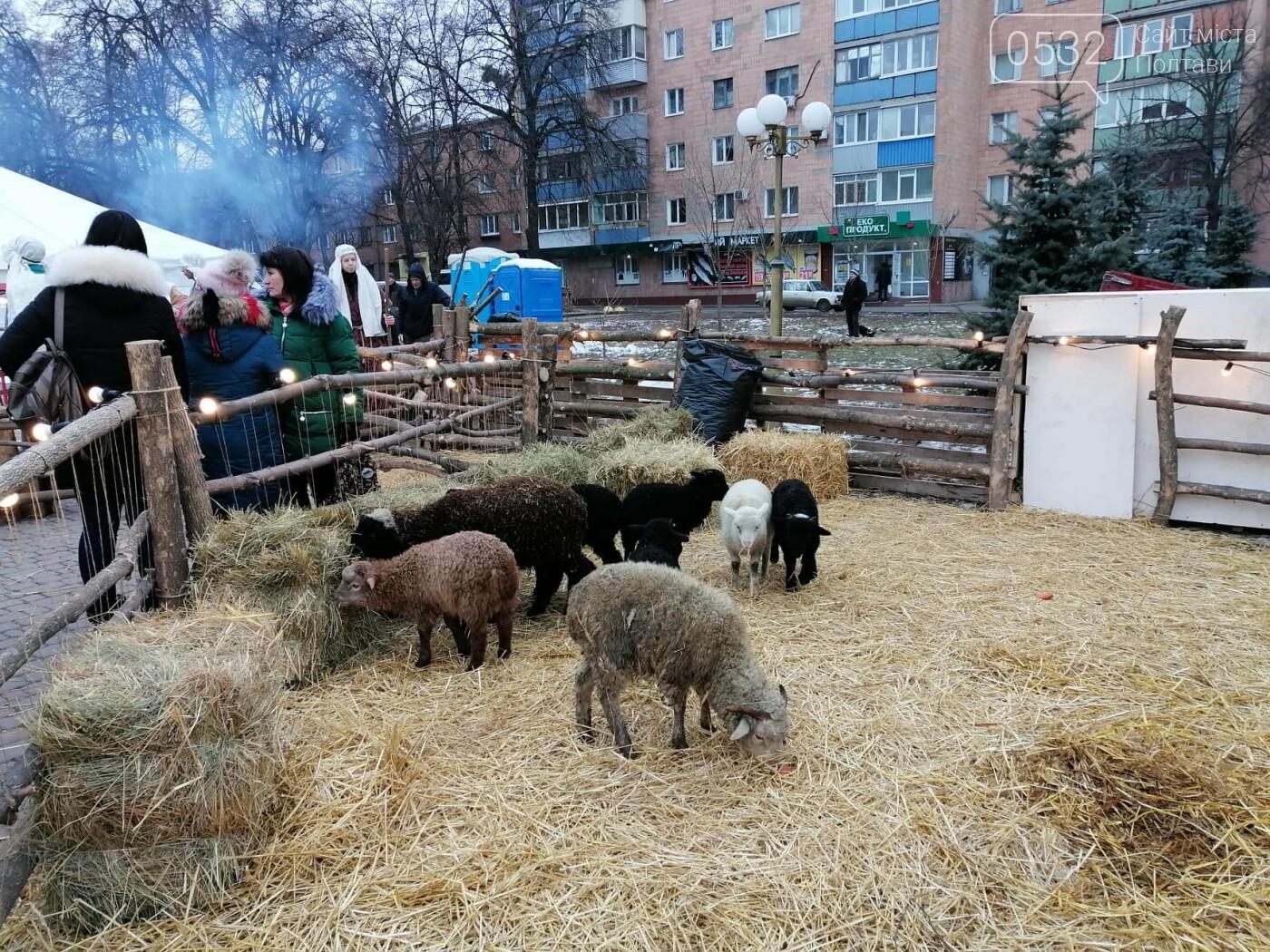 """У Полтаві другий рік поспіль розгорнулося Різдвяне містечко """"Ніч у Віфлеємі 2020"""" (ФОТО), фото-2"""