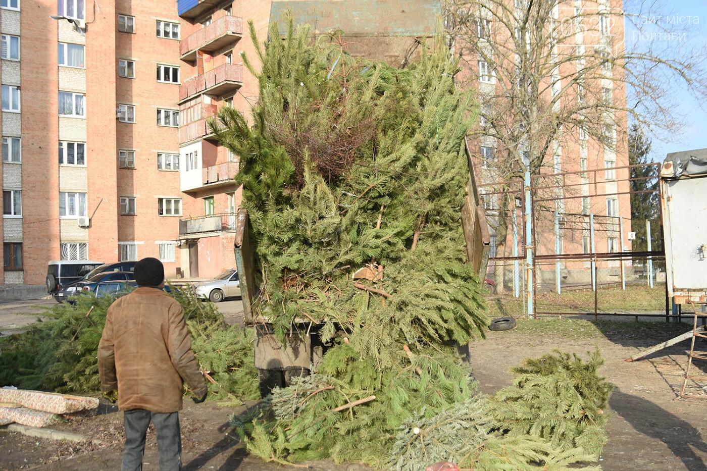 У Полтаві новорічні ялинки подрібнюють, щоб не завантажувати сміттєзвалище, фото-2
