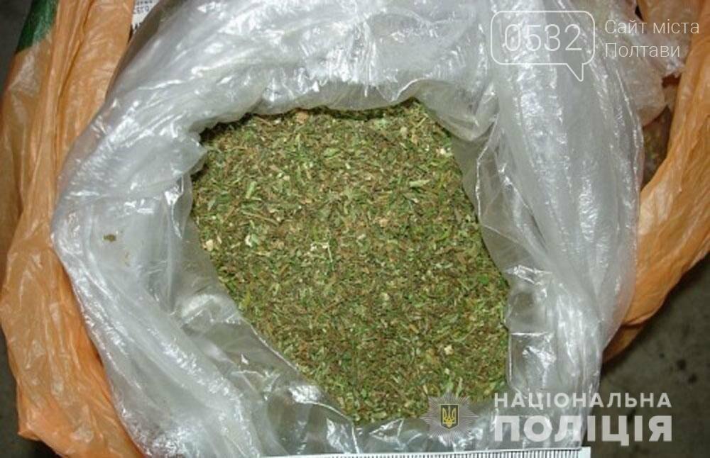 На Полтавщині поліцейські вилучили наркотики - понад 40 грамів канабісу, фото-1