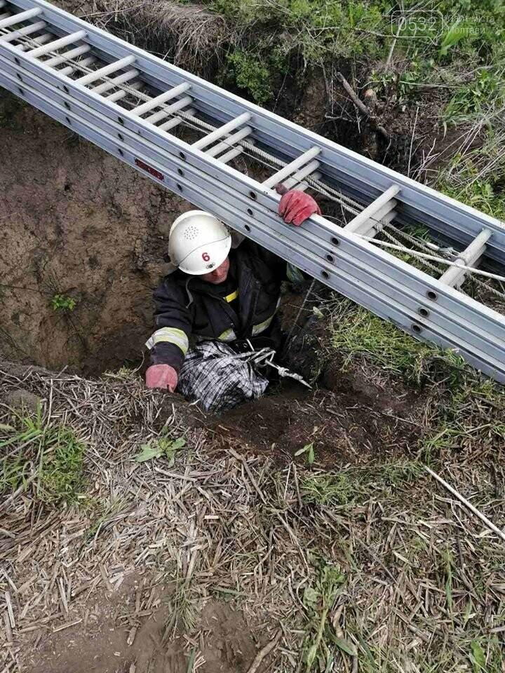 На Полтавщині рятувальники витягнули собаку із колодязя глибиною 40 метрів, фото-2