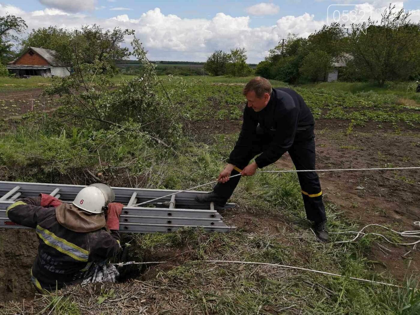 На Полтавщині рятувальники витягнули собаку із колодязя глибиною 40 метрів, фото-3