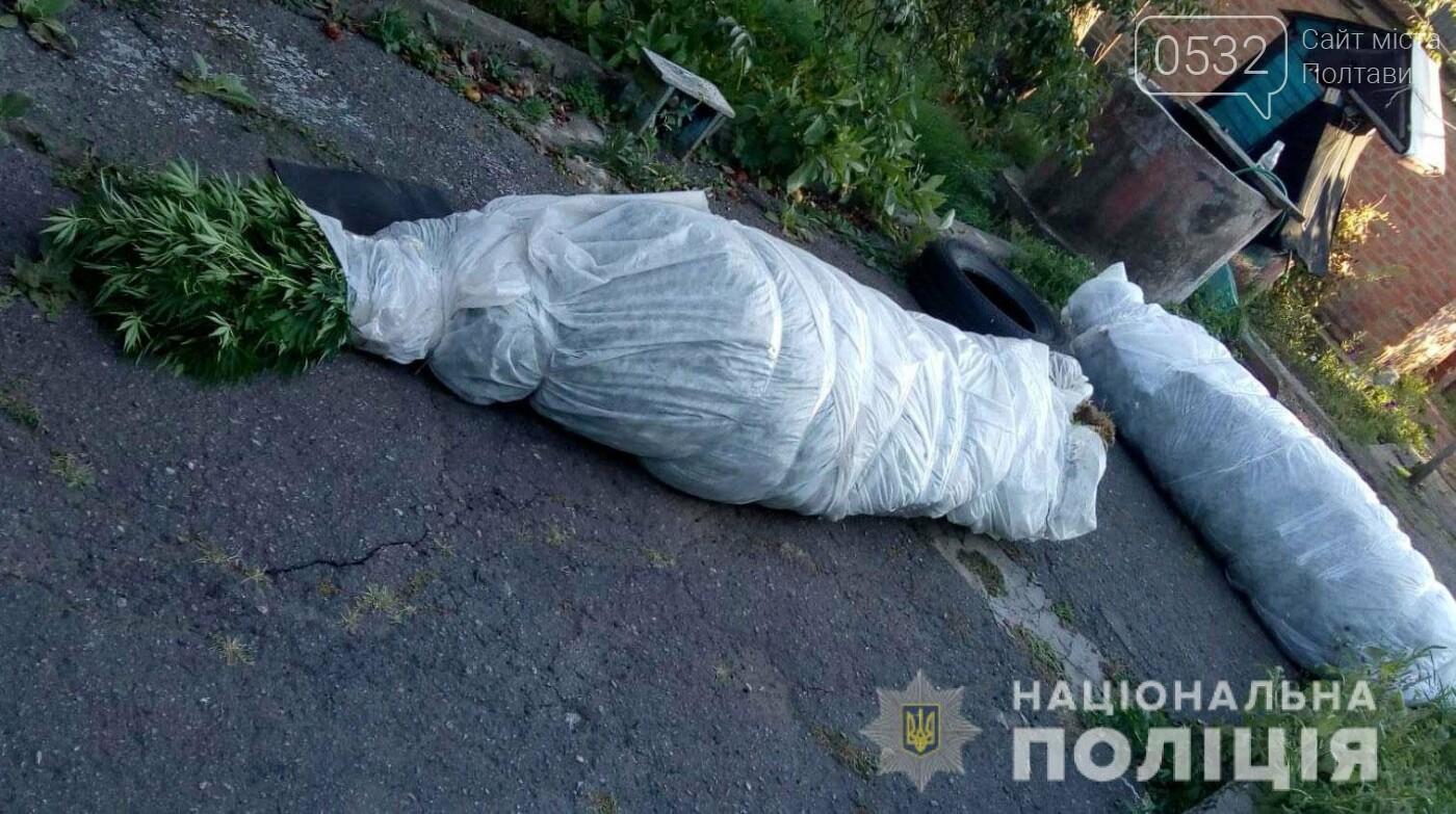 Поліція виявила незаконне вирощування рослин конопель жителем Полтавського району