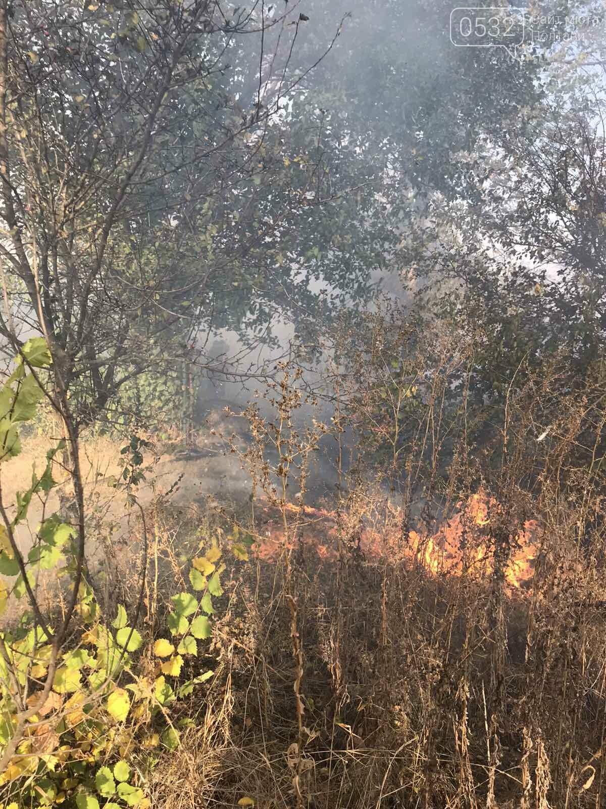 На Полтавщині за добу загасили 30 пожеж на відкритій території, фото-6