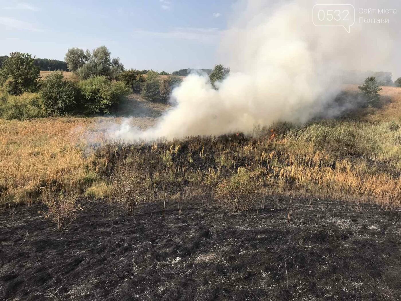 На Полтавщині за добу загасили 30 пожеж на відкритій території, фото-3