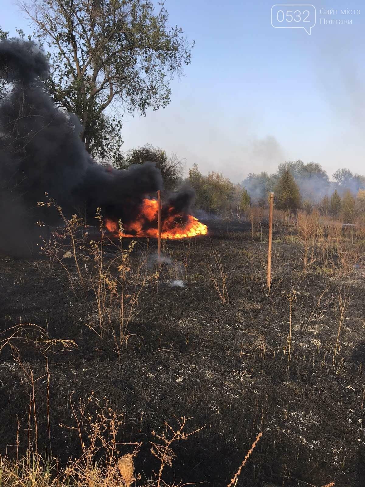 На Полтавщині за добу загасили 30 пожеж на відкритій території, фото-5