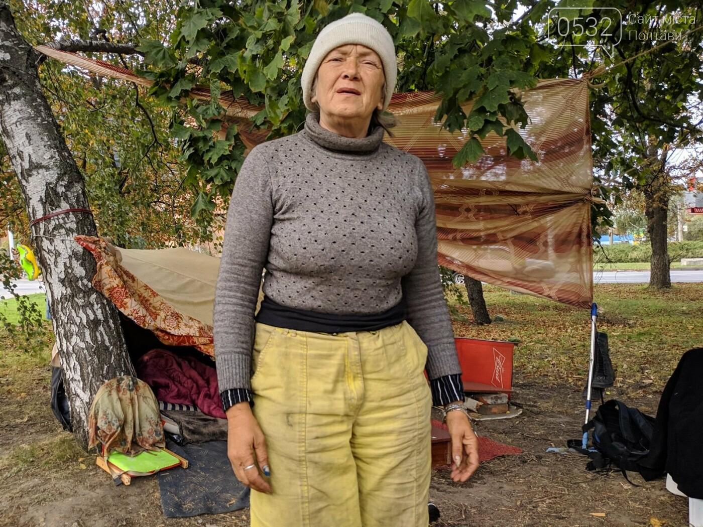 """У Полтаві безпритульна  будує нову """"дачу"""" біля дороги та чекає на квартиру від міської влади (ФОТО, ВІДЕО), фото-2"""