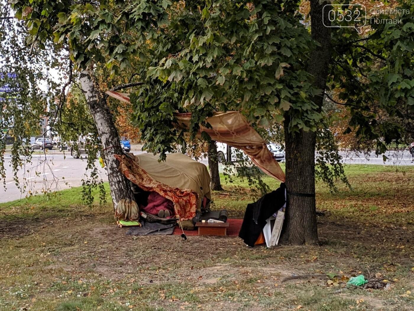 """У Полтаві безпритульна  будує нову """"дачу"""" біля дороги та чекає на квартиру від міської влади (ФОТО, ВІДЕО), фото-3"""