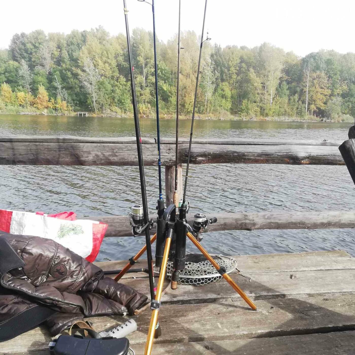 На Полтавщині тривають змагання зі спортивної риболовлі (ФОТО), фото-5