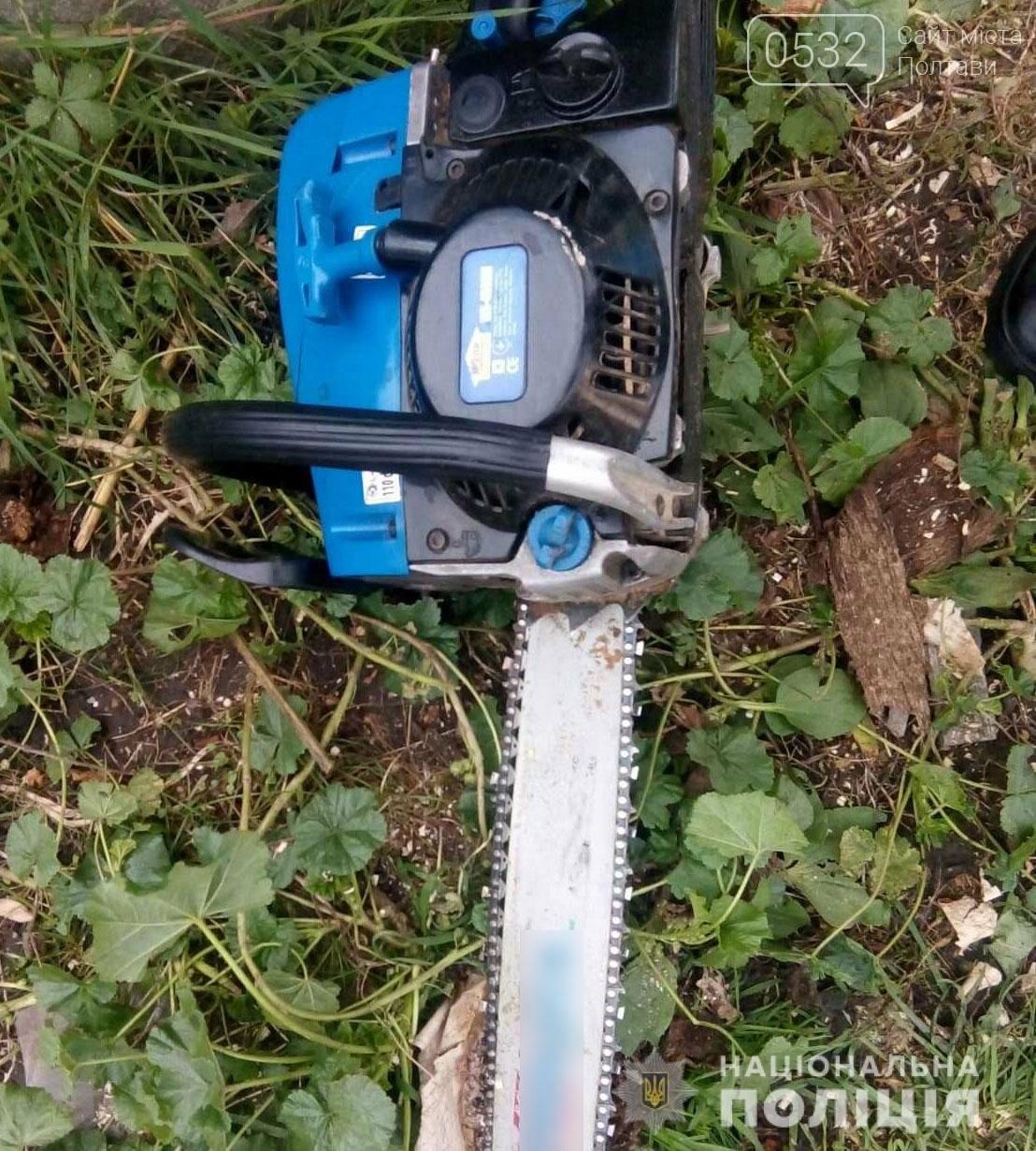 На Полтавщині чоловіка вбила бензопила, фото-1