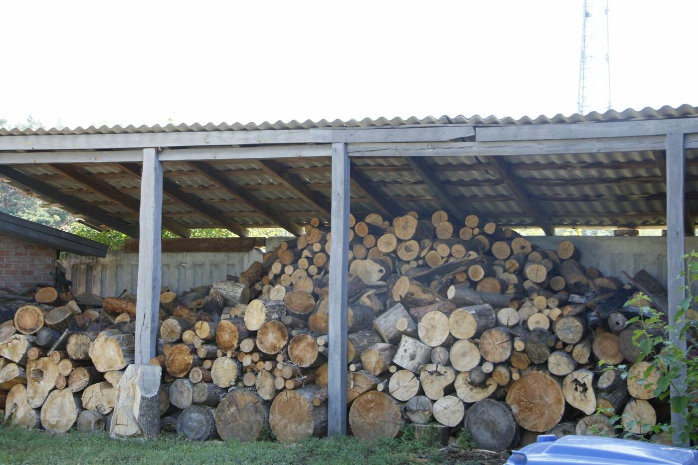 Полтавські лісівники захищають ліси під час надзвичайної пожежної небезпеки, фото-9
