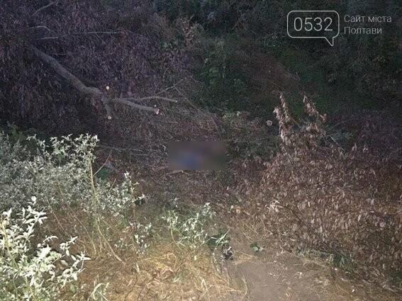 ВЛубенском районе шофёр Форд насмерть сбил трёх молодых людей и исчез