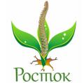 """Центр вертебрологии """"Росток"""" лечение позвоночника  в Полтаве"""