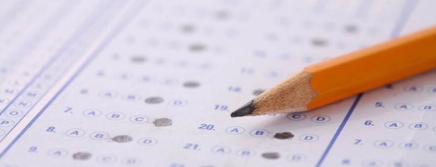 Випускники ПТУ та коледжів наступного року здаватимуть ЗНО