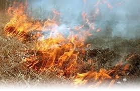 На Полтавщині 78-річний дідусь обгорів, коли палив траву